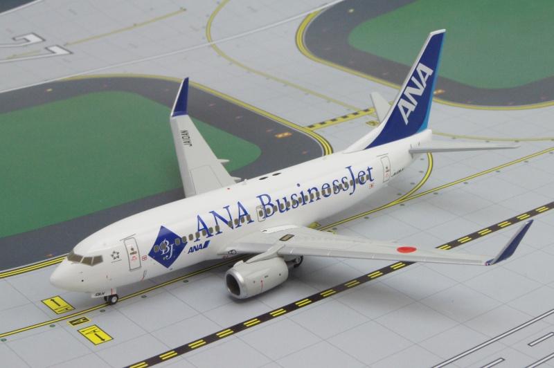 B737-700ER ANA/ビジネスジェット