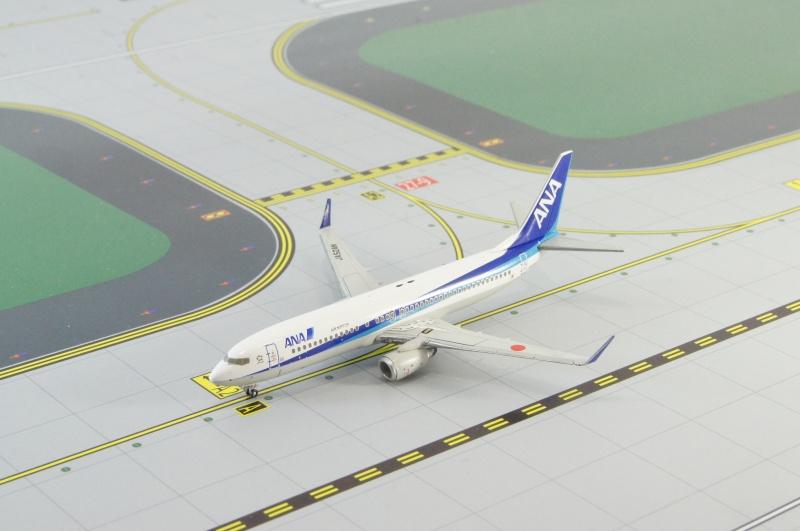B737-800 ANA