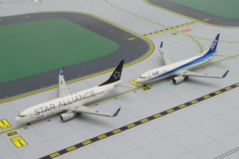 B737-800 ANA/STAR ALLIANCE&B737-800 ANA